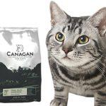 猫の尿路結石(尿道結石)の予防や健康維持に最適なキャットフード3選